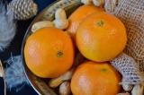 tangerines-2989212_1920